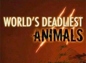 Show World's Deadliest Animals