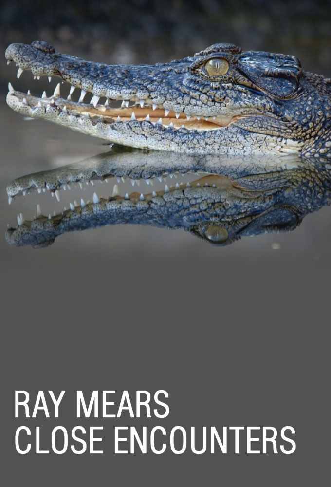 Show Ray Mears: Close Encounters
