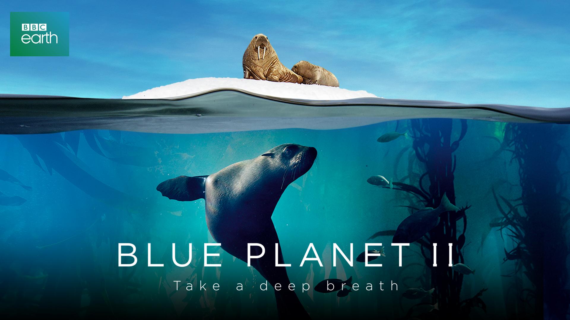 Сериал Голубая планета 2