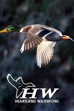 Show Heartland Waterfowl