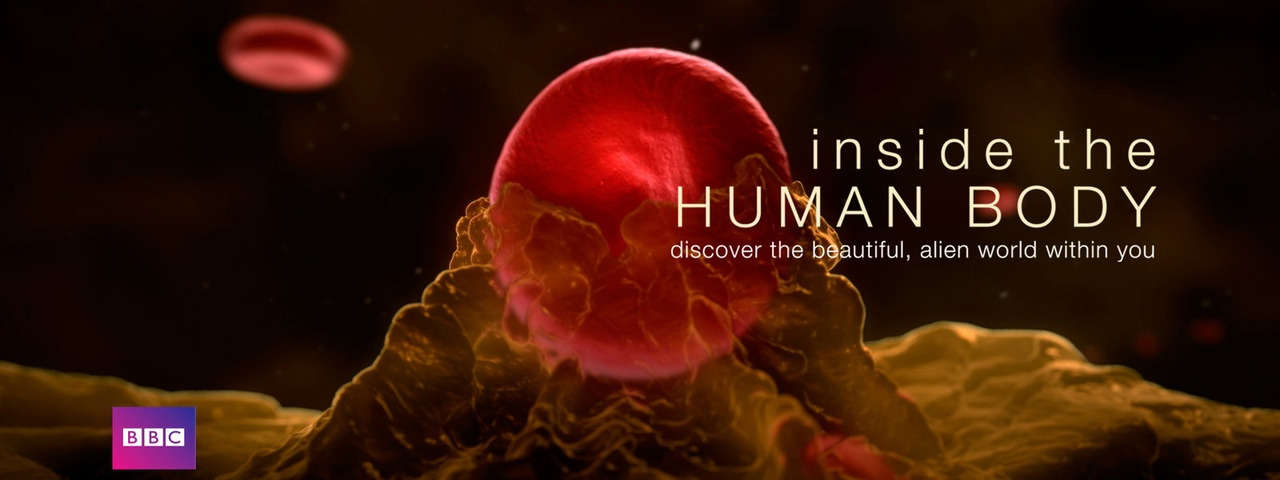 Show Inside the Human Body