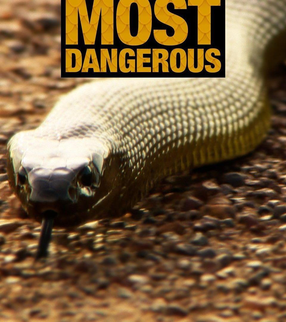 Show Australia's Most Dangerous