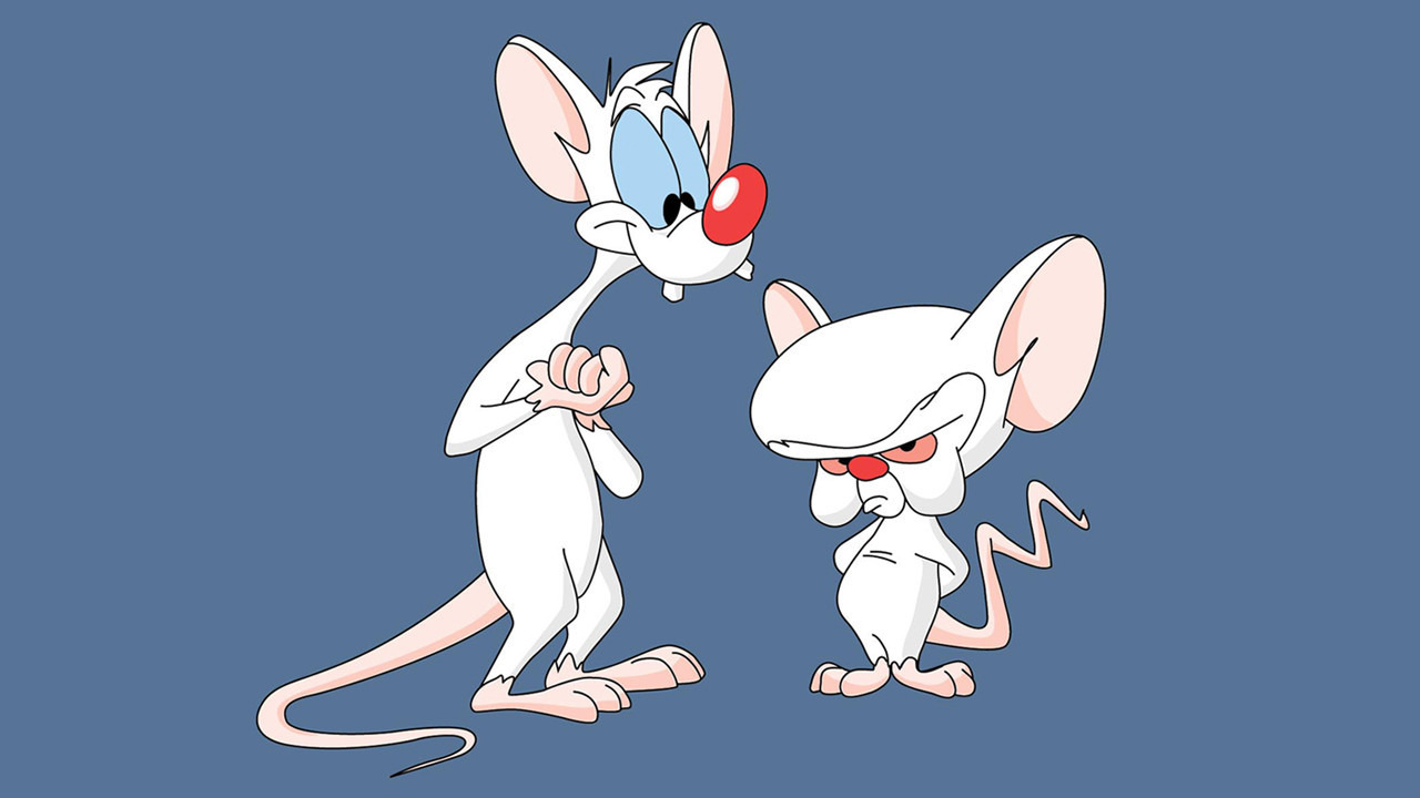 Show Pinky and the Brain
