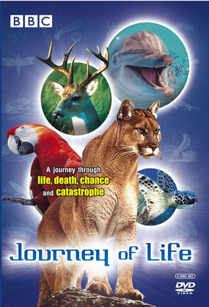 Show Journey of Life
