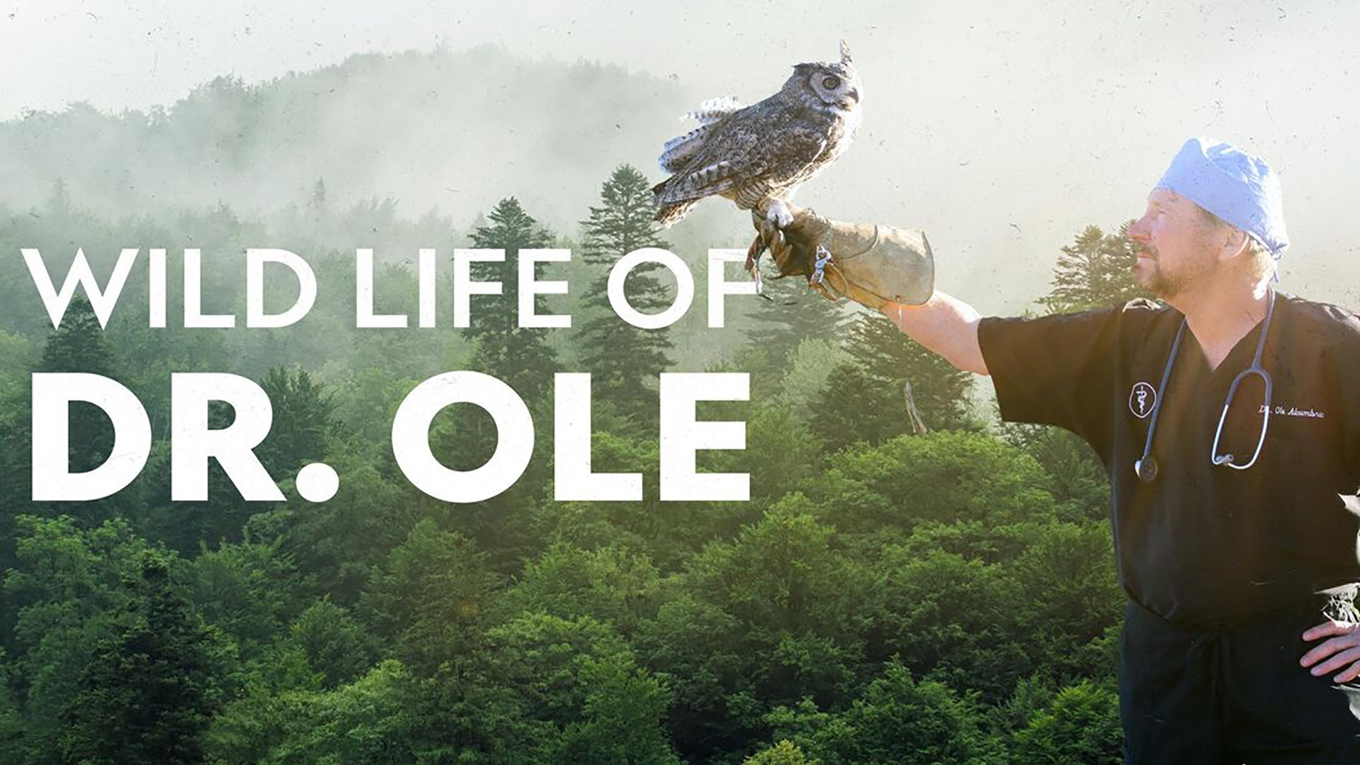 Show The Wild Life of Dr. Ole