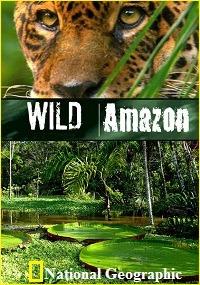 Сериал Дикая природа Амазонки