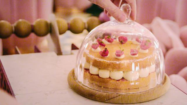 Show Amazing Cakes & Bakes