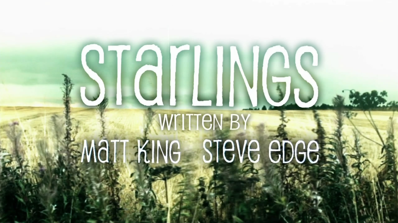 Show Starlings