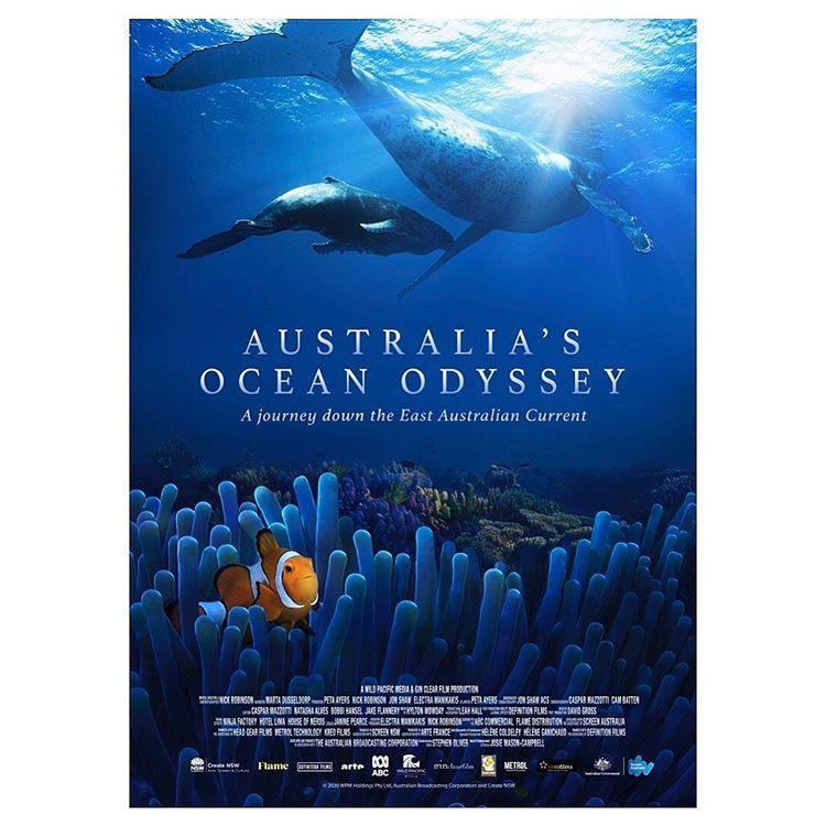 Show Australia's Ocean Odyssey: A Journey Down the East Australian Current