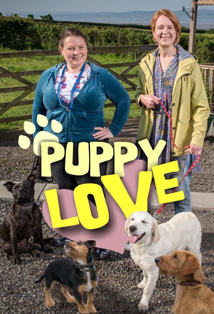 Show Puppy Love