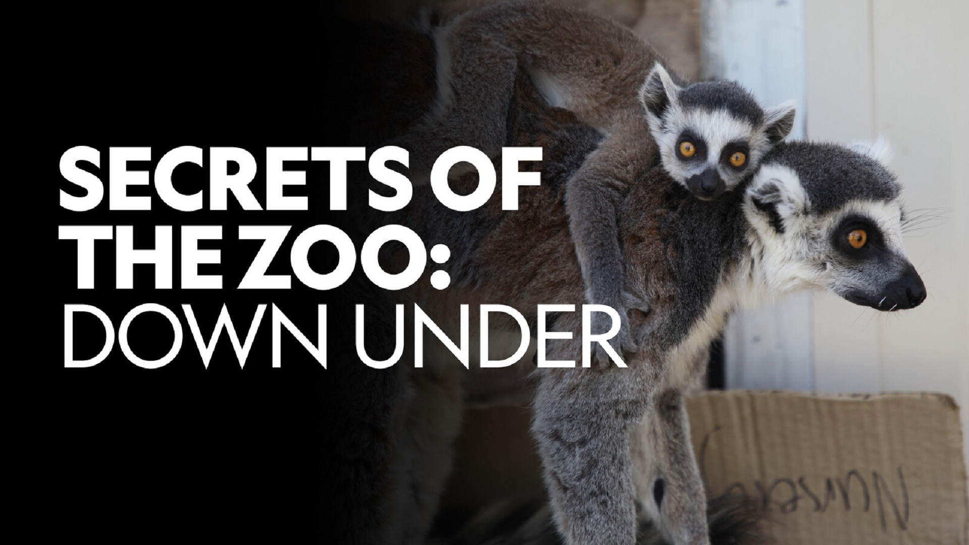 Show Secrets of the Zoo: Down Under