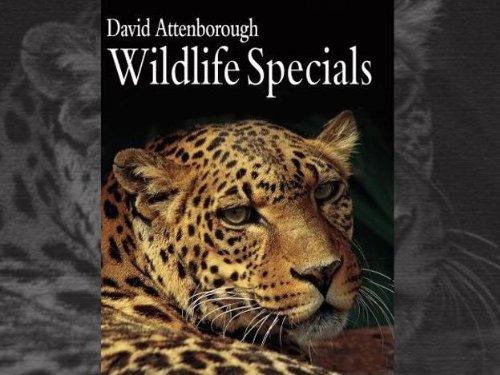 Сериал Живая природа: Специальные выпуски