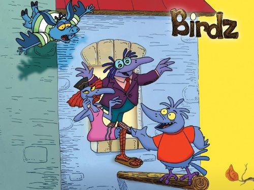 Cartoon Birdz