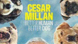 Cesar Millan: Better Human Better Dog сезон 1
