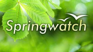 Springwatch season 2009