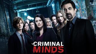 Мыслить как преступник сезон 2