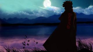 Naruto: Shippuuden season 14