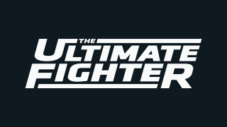 The Ultimate Fighter сезон 2