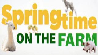Springtime on the Farm сезон 1