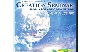 Creation Seminar сезон 2