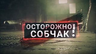 Осторожно: Собчак season 2