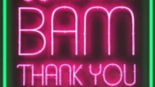 Wham Bam Thank You Ma'am сезон 1