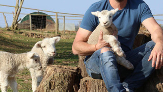 Spring at Jimmy's Farm сезон 1