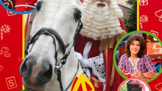 Het Sinterklaasjournaal сезон 20